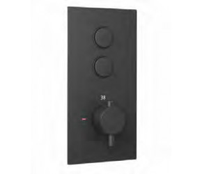 Eastbrook Smooth Black Round Concealed Thermostatic Double Push Button Shower Valve