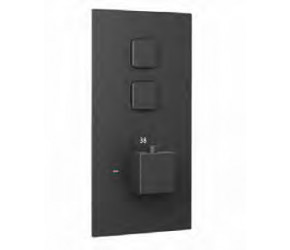 Eastbrook Smooth Black Square Concealed Thermostatic Double Push Button Shower Valve